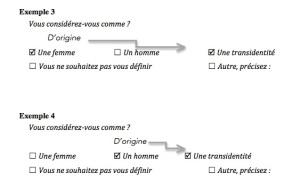 Exemples 3 et 4 : L'identification de genre, exemples de débordements d'un dispositif